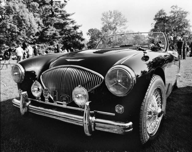 Austin Healey Standing Alone