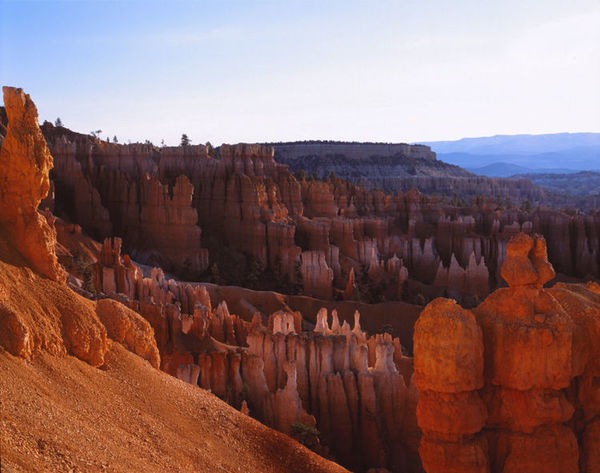 Morning Glow at Bryce Canyon