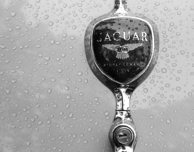 Jag Trunk Detail